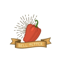Red pepper badge vegetable food flat vector