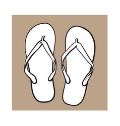 Pair of flip flops summer time vacation attribute vector