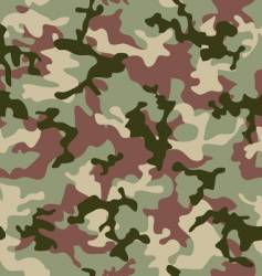 camouflage jungle vector image vector image