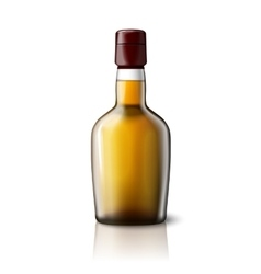 Blank realistic whiskey bottle isolated on grey vector image