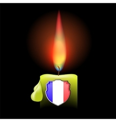 Burning Candle and Shield vector image