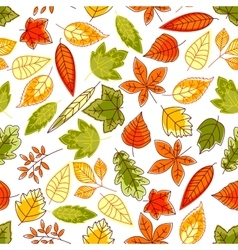 Autumn leaves pattern seamless background vector image