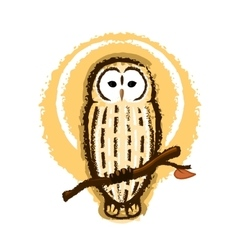 Barred Owl vector image vector image