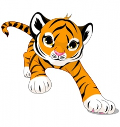cartoon baby tiger vector image vector image