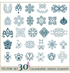 Isolated abstract floral pattern vector