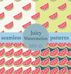 Juicy Watermelon seamless pattern set vector image vector image