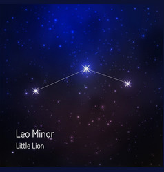 little lion leo minor constellation in the night vector image vector image