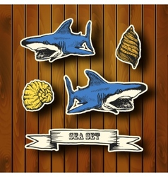 Sea collection hand drawn in vintage style vector