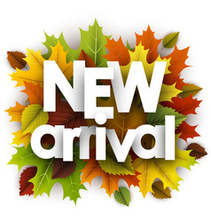 Autumn new arrival poster with leaves vector