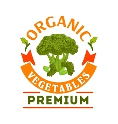 Broccoli organic healthy vegetable emblem vector image vector image