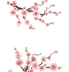 Cherry or sakura floral frame eps 10 vector