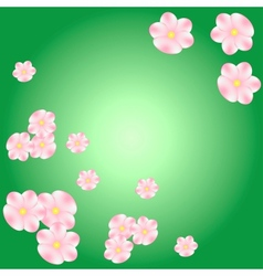 pink flowers card background vector image