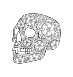 Skull coloring for adults vector image vector image