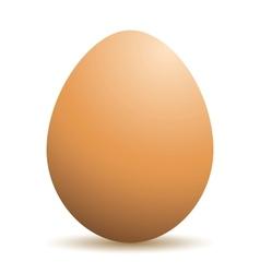 Realistic egg vector