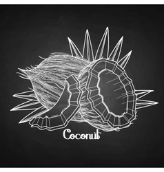 Graphic coconut design vector image
