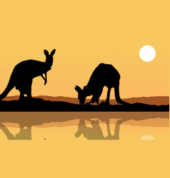 Kangaroo on the lake landscape silhouette vector