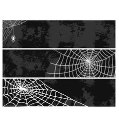 spiders cards spider web silhouette spooky nature vector image