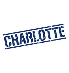 Charlotte blue square stamp vector