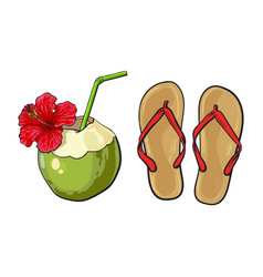 Pair of flip flops and coconut drink summer vector