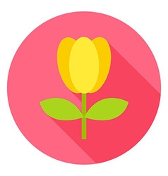 Spring tulip flower with leaves circle icon vector