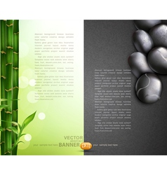 bamboo and pebbles vector image