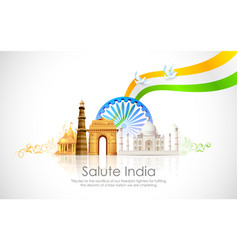 India Background vector image vector image