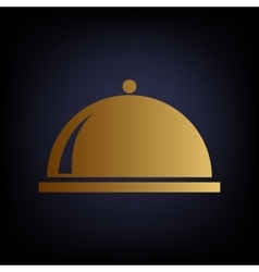 Server sign Golden style icon vector image