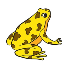 Cartoon of poison-dart frog vector