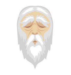 a wise old cartoon man with and a long white vector image vector image