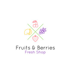 fruits and berries logo for shop and cafe vector image