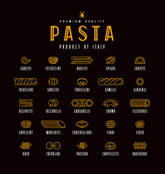 Set of icons varieties of pasta vector