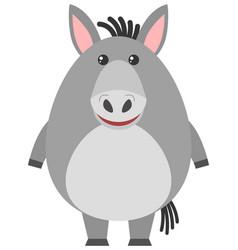 gray donkey on white background vector image vector image