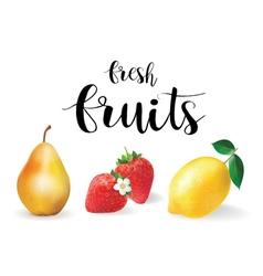 Fresh fruit set  realistic fruit lemon pear and vector