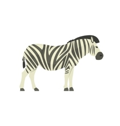 Zebra realistic simplified drawing vector
