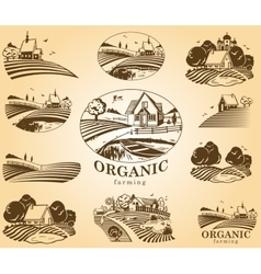 Organic farming design elements vector