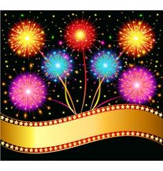 bright salute firework vector image