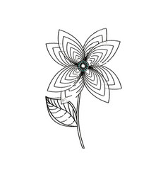 lily flower decoration sketch vector image vector image