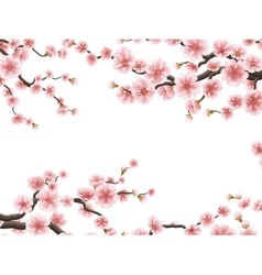 Blossom sakura for your design EPS 10 vector image vector image