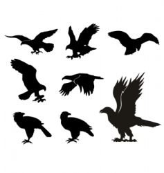 eagle silhouettes vector image vector image