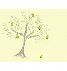 pear tree vector image vector image