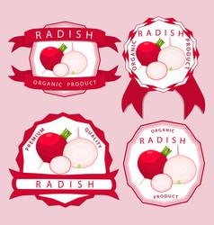 the theme radish vector image