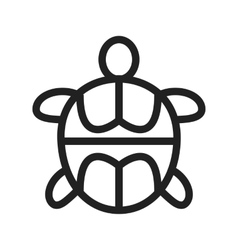 Pet turtle vector