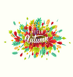 fashionable autumn vector image vector image