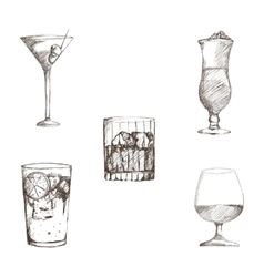 Graphic of sketch Beverages vector image vector image