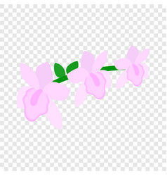 pink orchid isometric icon vector image