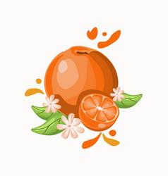 Orange delicious fruit on black white vector