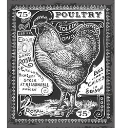 Vintage poultry and eggs advertising on blackboard vector
