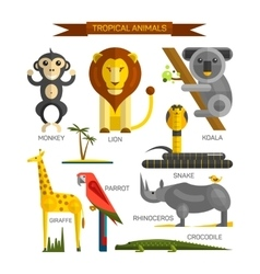 Tropical animals set in flat style design vector