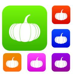 Ripe pumpkin set collection vector