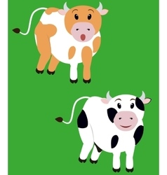 Two cute cow isolated cartoon calf vector